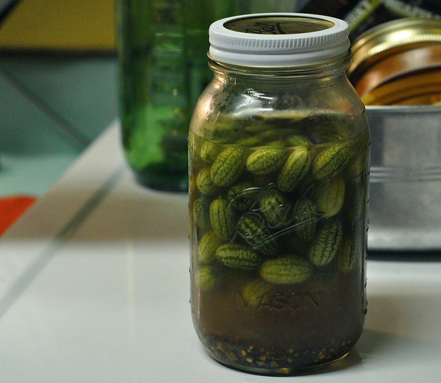 pickled mexican sour gherkins
