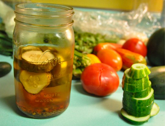 Can You Reuse Pickle Brine Food In Jars