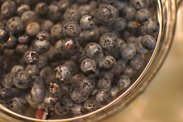 washing blueberries