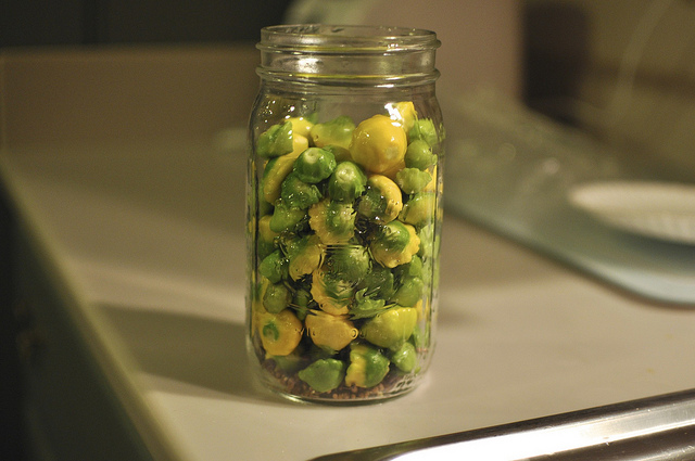 baby pattypan in a jar