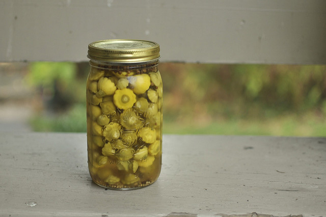 pickled pattypans