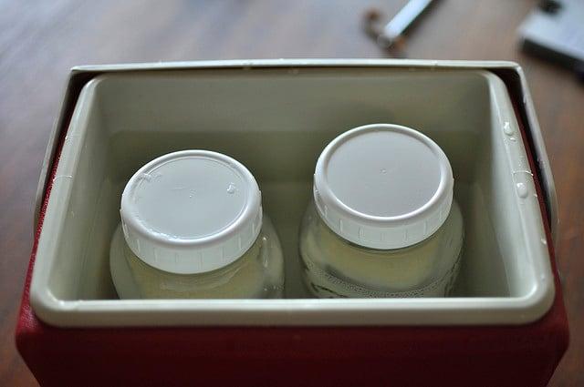 jars of milk in cooler