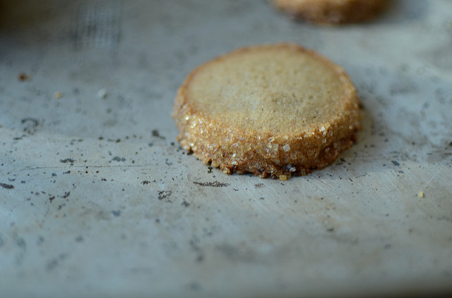 salted rye cookie