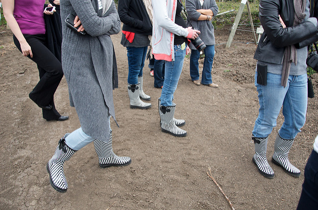 berry tour boots