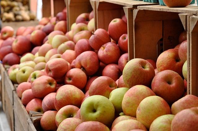 apples at Three Springs