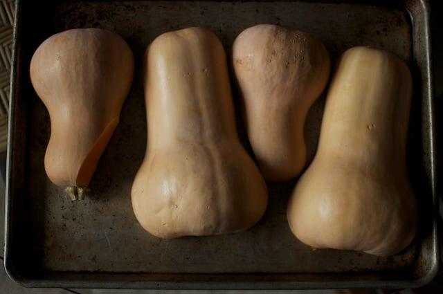 butternut squash halves