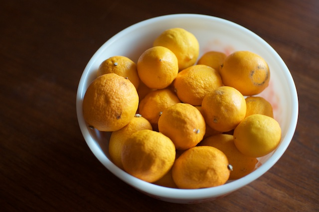 bowl of meyer lemons