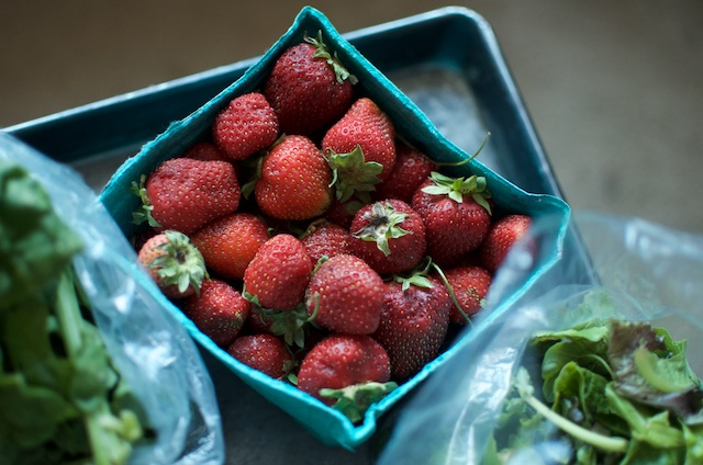 csa strawberries