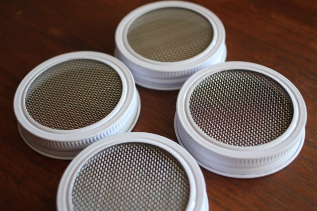 angle view of lids