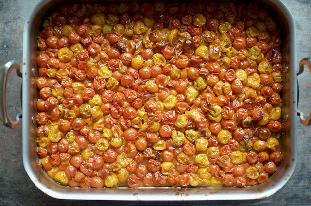 roasted small tomatoes