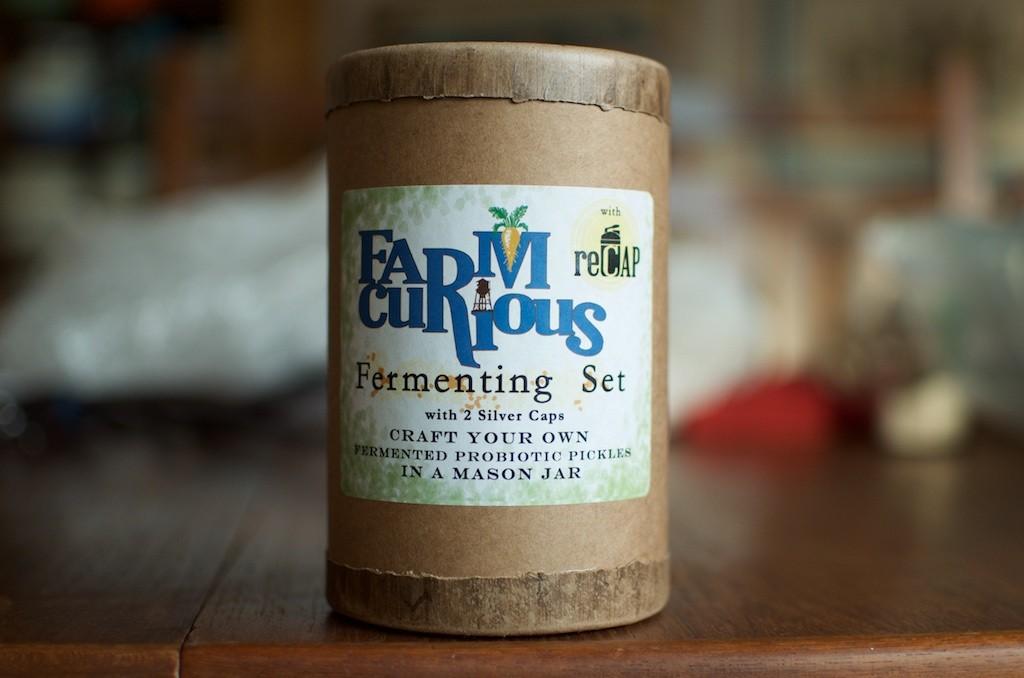 FarmCurious Kit - Food in Jars