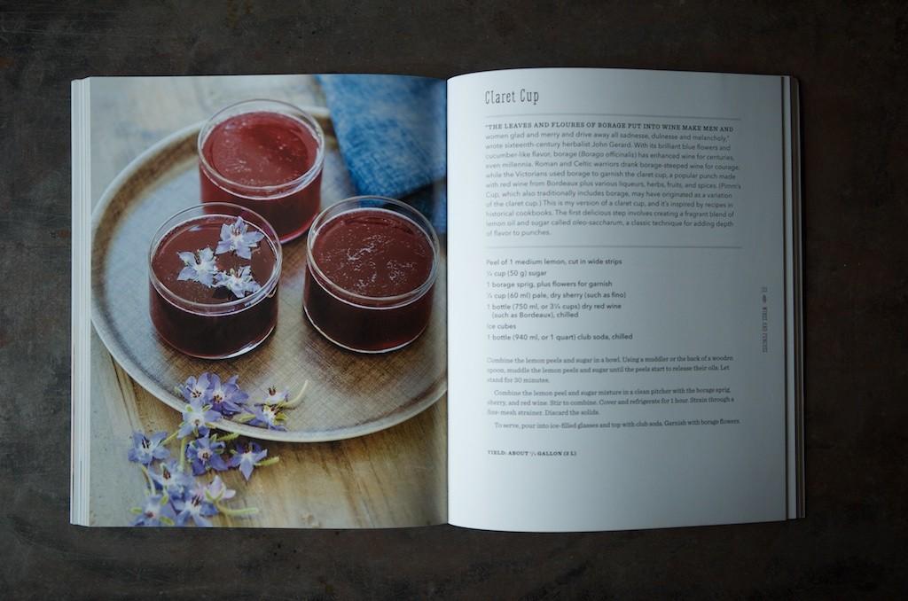 Wild Drinks Claret Cup - Food in Jars