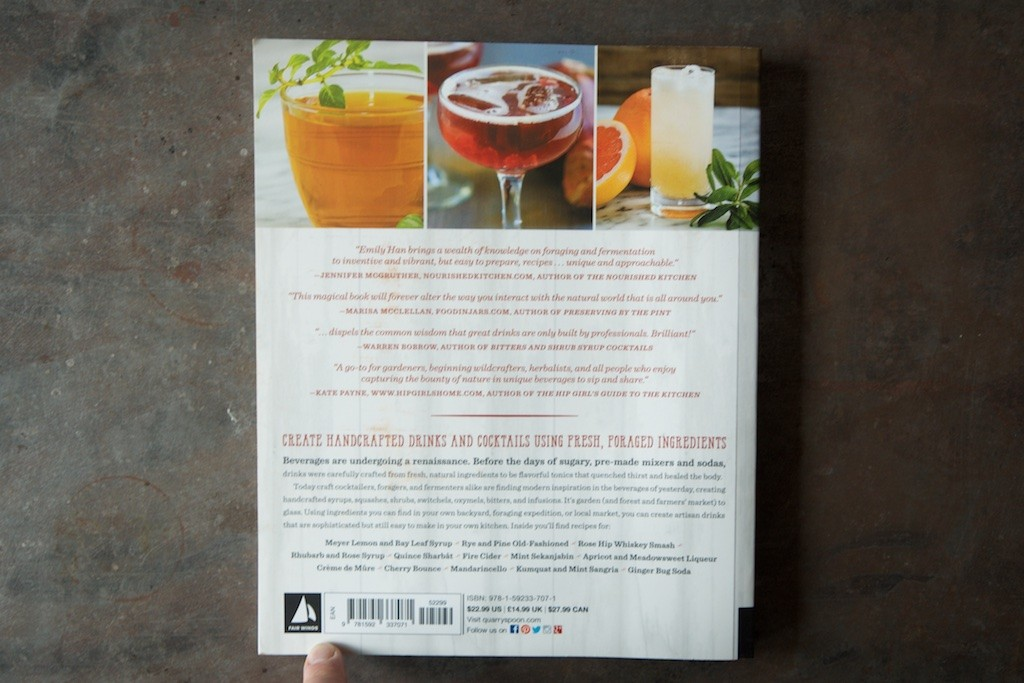 Wild Drinks and Cocktails Back - Food in Jars