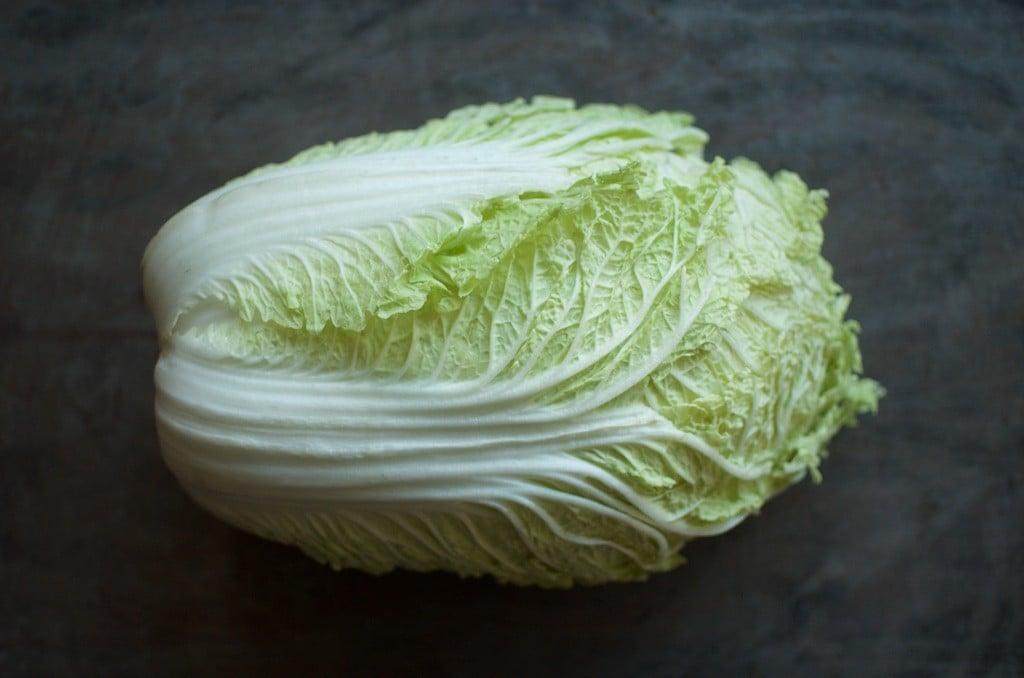 napa cabbage - Food in Jars