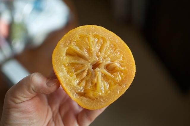 tender orange insides for small batch marmalade - Food in Jars