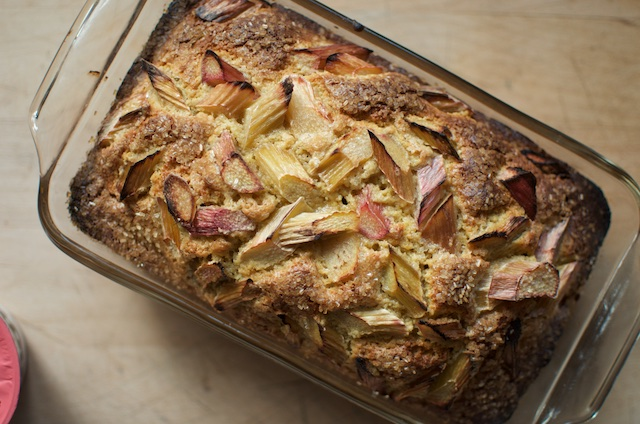 A close-up of the rhubarb yogurt loaf cake, to show the finished texture.