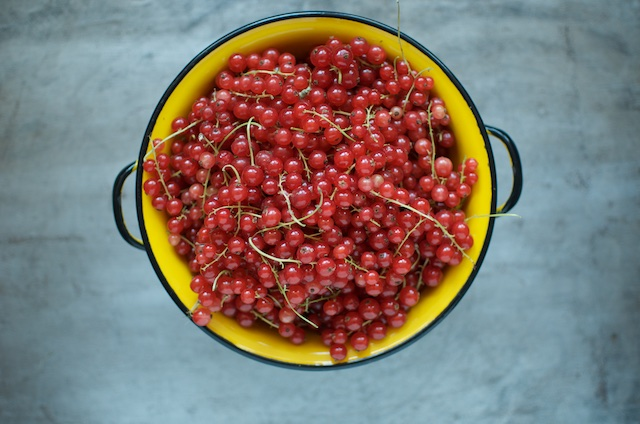 Red currants in a yellow colander