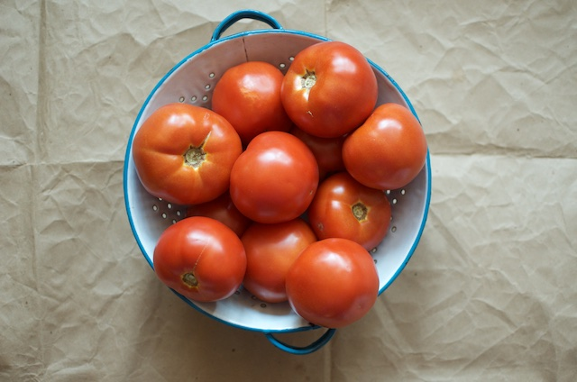 six pounds of tomatoes in a colander