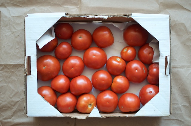 ten pounds of tomatoes