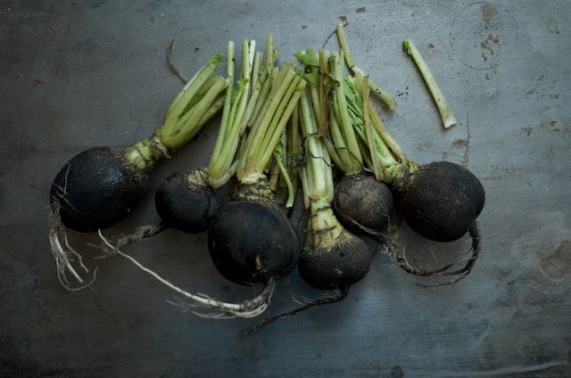 black-radishes