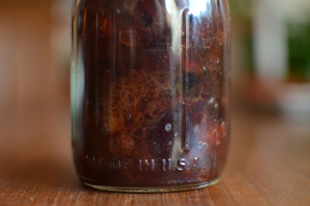 A detailed look at a single jar of plum conserve