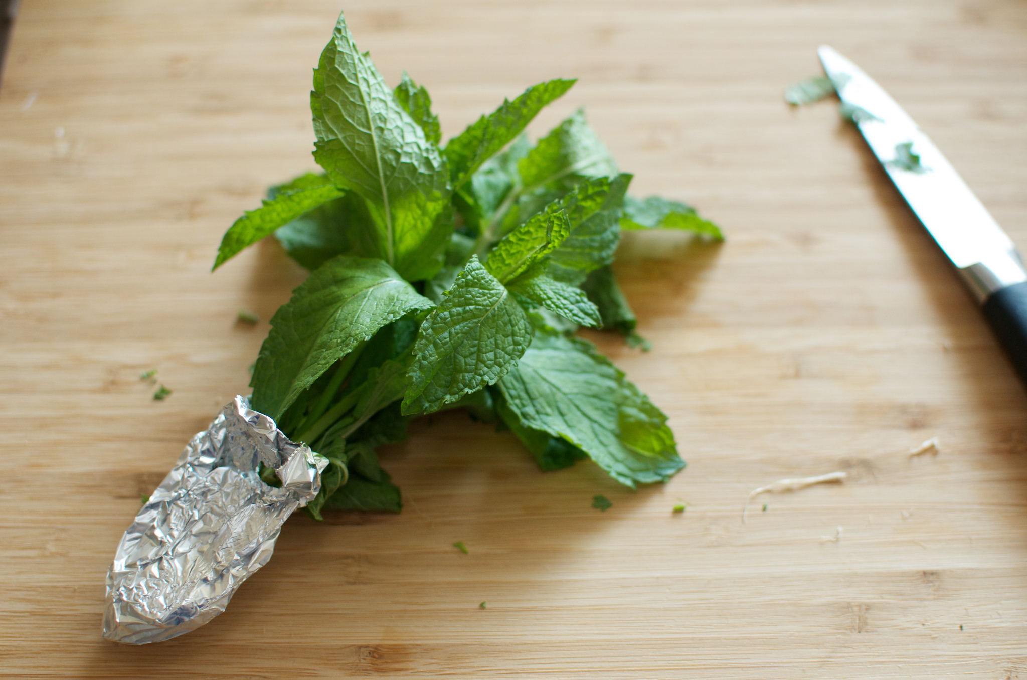 Salt Preserved Herbs from Preserving by the Pint