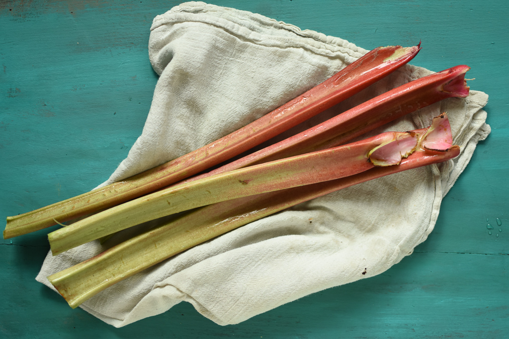 Three long stalks of pink and green rhubarb on a towel sitting on a painted green board.